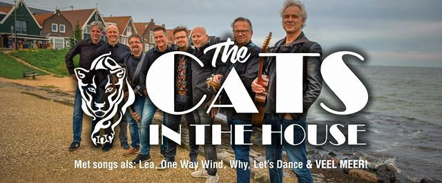 The Cats In The House Zaal Hoge Boekel